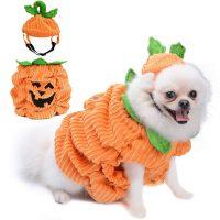 Disfraz mascota Halloween