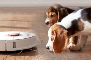 mejor robot aspiradora para mascotas perros gatos y otros animales comparativa mejores robots friegasuelos para pelos de animal de compañia www.comprarobot.com